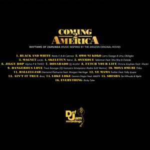 DEF JAM AFRICA PRESENTS RHYTHMS OF ZAMUNDA (MUSIC INSPIRED BY COMING 2 AMERICA)