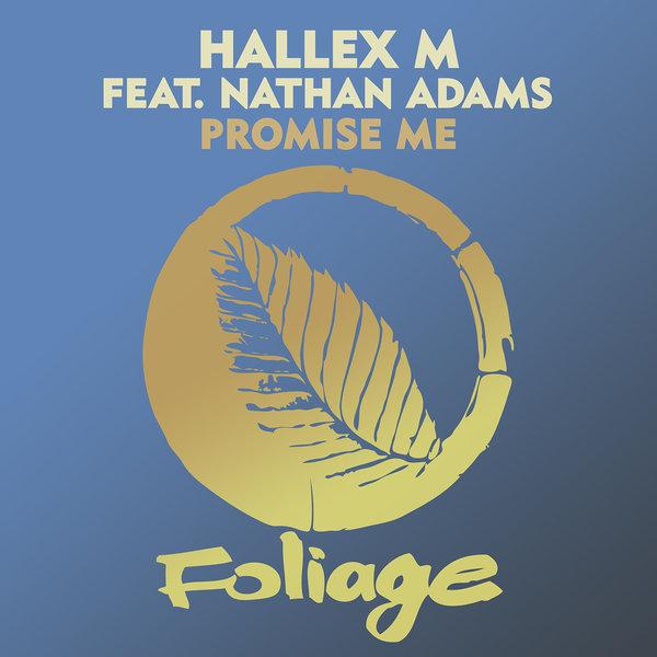 Hallex M feat Nathan Adams – Promise Me